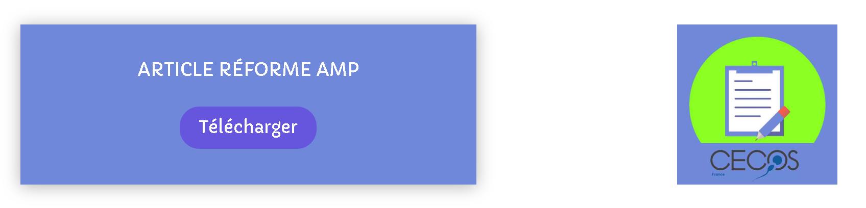 Gros plan sur document AMP